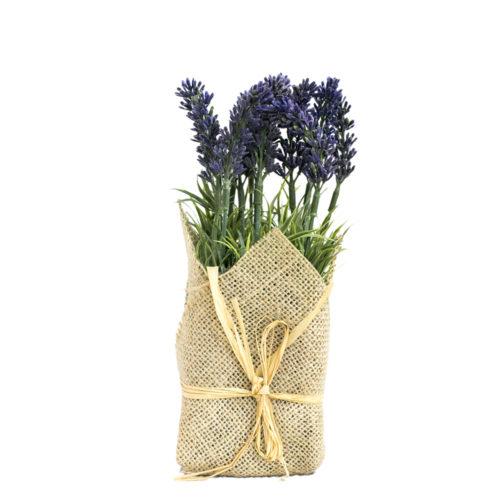 Lavender  VLA-001