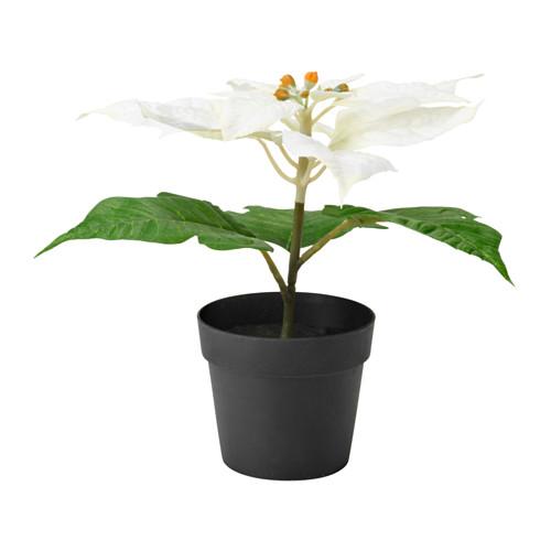 Artificial Flower  IEA-003