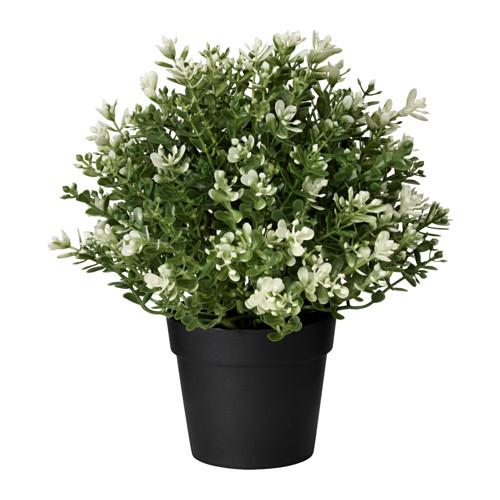 Artificial Plant  IEA-012
